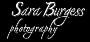 Sara Burgess Photography